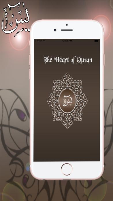 Surah Yasin Audio Urdu - English Translation by   Salim