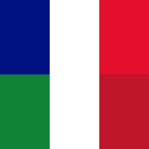 Offline French Italian Dictionary with Voice