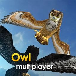 Owl Multiplayer
