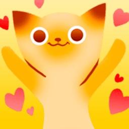 Orange Kitten!