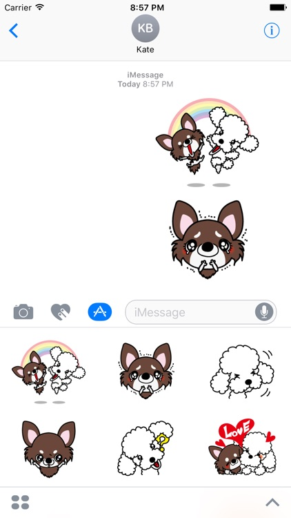 Poodle Dog Stickers for iMessage Daily Use
