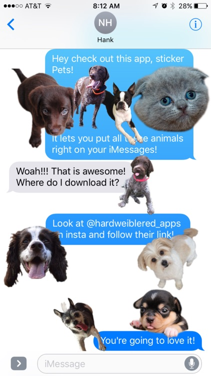Pet Stickers, Dogs, Cats, Horses, & Fish!