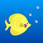 Koi pond with pearls Goldfish adventure
