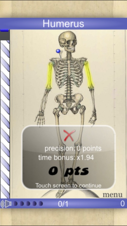 Speed Bones MD