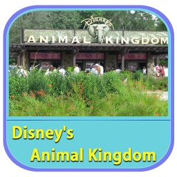 The Great App For Disney's Animal Kingdom