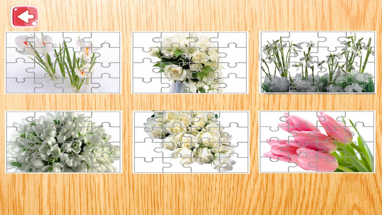 Flowers Jigsaw Puzzle For Kids 4 Year screenshot-3