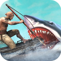 Hungry Dolphin Fish Simulator