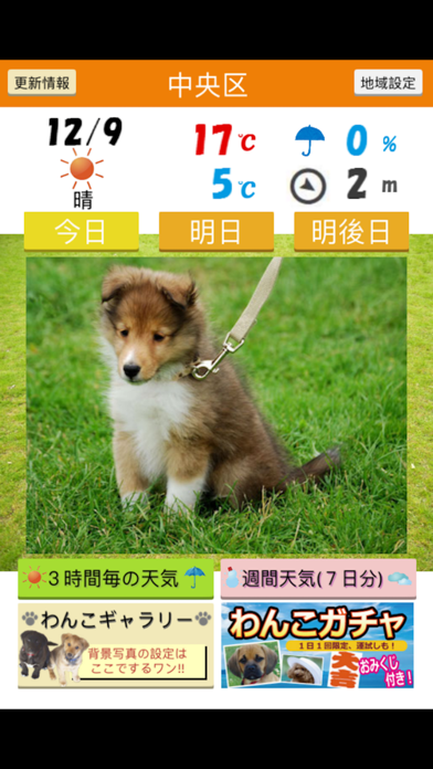みんなのわんこ天気〜天気予報+犬写真で毎日に少しほっこり〜のおすすめ画像1