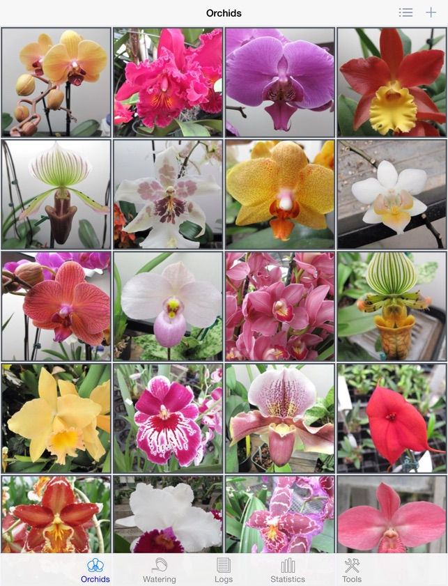 orchid album on the app store