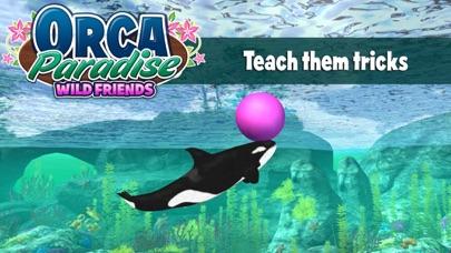 Orca Paradise: Wild Friends screenshot three