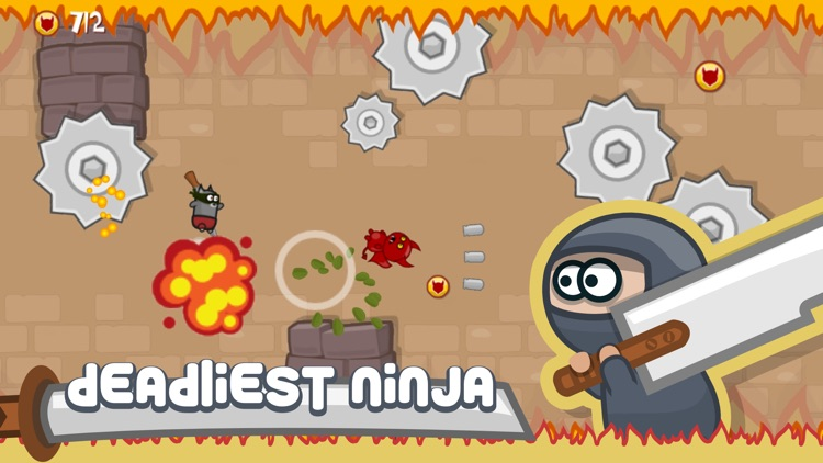 Ninja Shurican: Tiny Deadly Fighter
