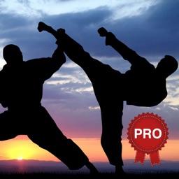 Urban Fighter Workout Challenge PRO Self Defense