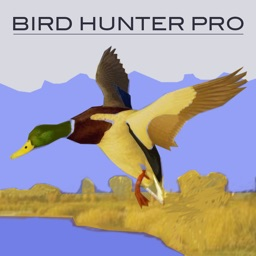 Bird Hunter Pro