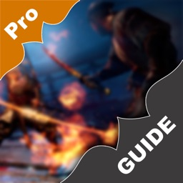 Pro Guide for NiOh