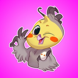 Colored Funny Bird Stickers
