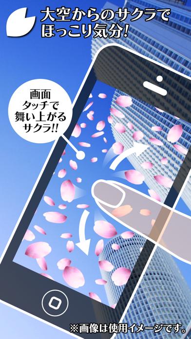 サクラなう! ~桜舞う不思議カメラ~ ScreenShot2