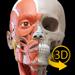 肌肉   骨骼 - 人体解剖学3D互动图集