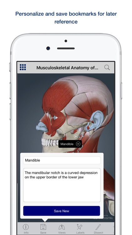 Muscle Anatomy: A Johns Hopkins Medicine 3D App screenshot-3