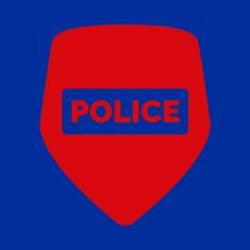 Activities of Flashing Police Lights