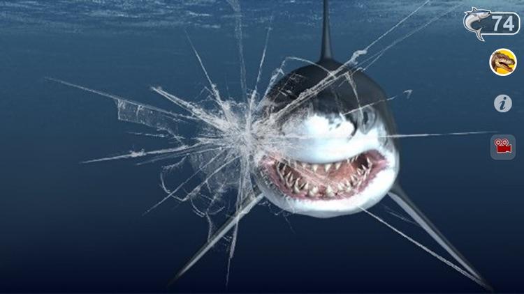 Talking Great White : My Pet Shark screenshot-4