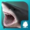 大白鲨-袋鼠跳跳
