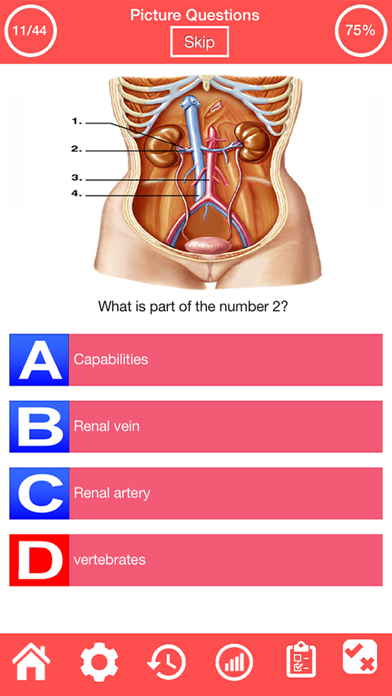 Human Urinary System Quiz screenshot 8