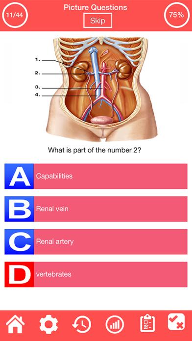 Human Urinary System Quiz screenshot 3