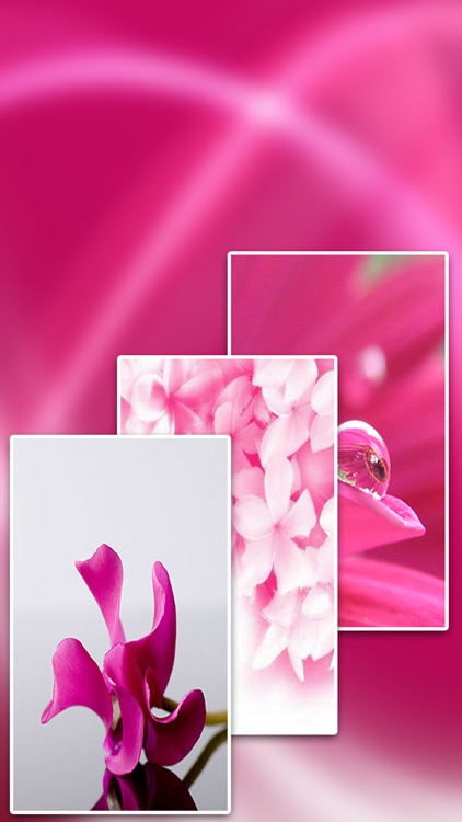 Full HD Pink Wallpapers screenshot-3