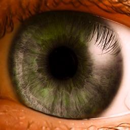 eyePatientsMobileFree