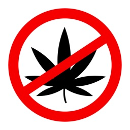 Say No to Drugs Wallpapers - Stop Taking Drugs