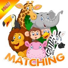 Activities of Wild Animal Puzzle Games