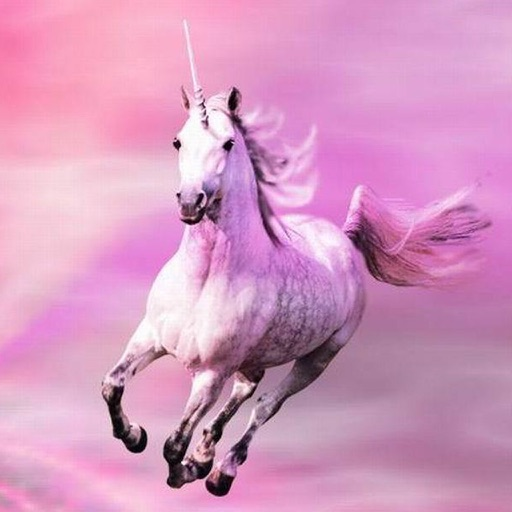 Cute Rainbow Unicorn Wallpapers