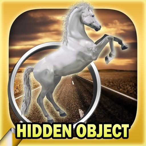 Hidden object: Mysterious traveler
