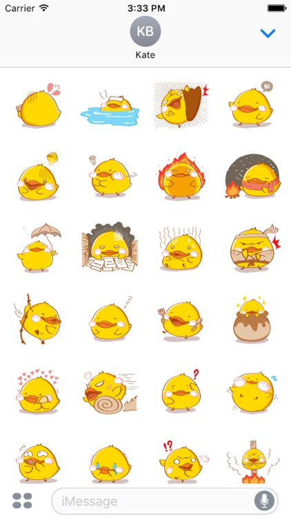 Fat Funny Duck