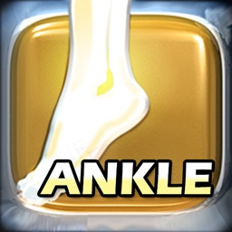 PT and OT Helper Ankle