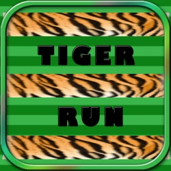 Extreme Tiger Run - catching rabbits Simulator
