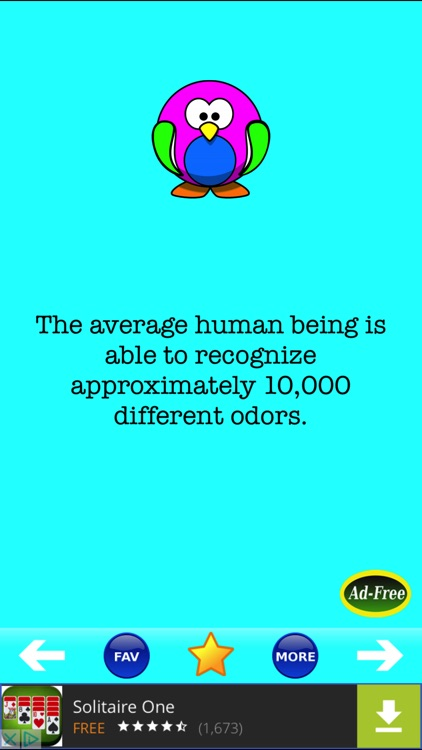 Best Science Facts