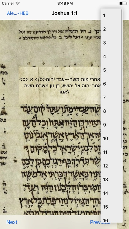 Ancient Aleppo Bible Touch Translate screenshot-3