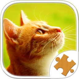 Cat Kitten Kitty Pet Jigsaw Puzzle Sliding Game