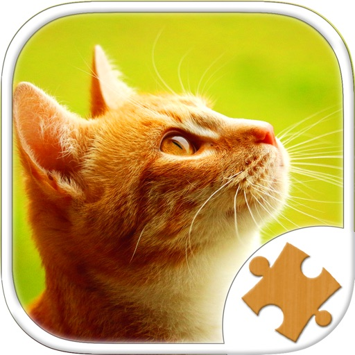 котята кот том игры головоломки для детей