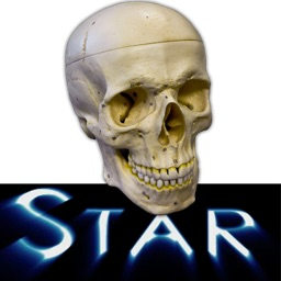 Anatomy Star - Head and Neck