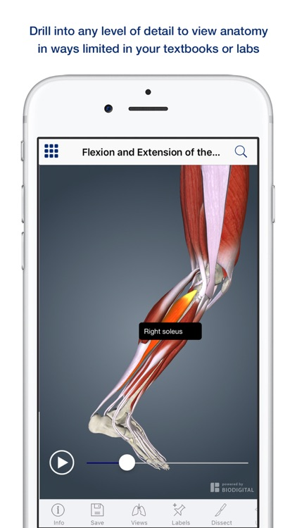 Muscle Anatomy: A Johns Hopkins Medicine 3D App screenshot-2