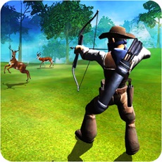 Activities of Archery Master Animal Hunter