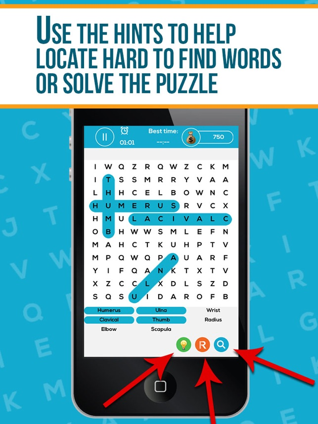 Human Anatomy Word Search Pro On The App Store