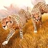 Wild Animal Simulator . Free Jungle Animals Racing Reviews