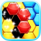 Hexa Fit Block Puzzle icon