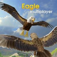 Codes for Eagle Multiplayer Hack