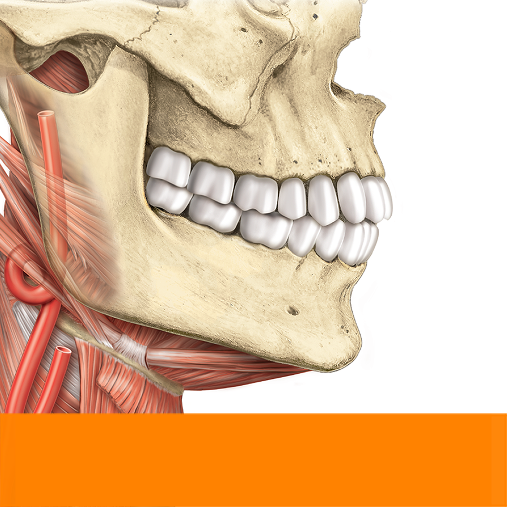 Sobotta Anatomie Atlas - App - iTunes Deutschland | Chartoo