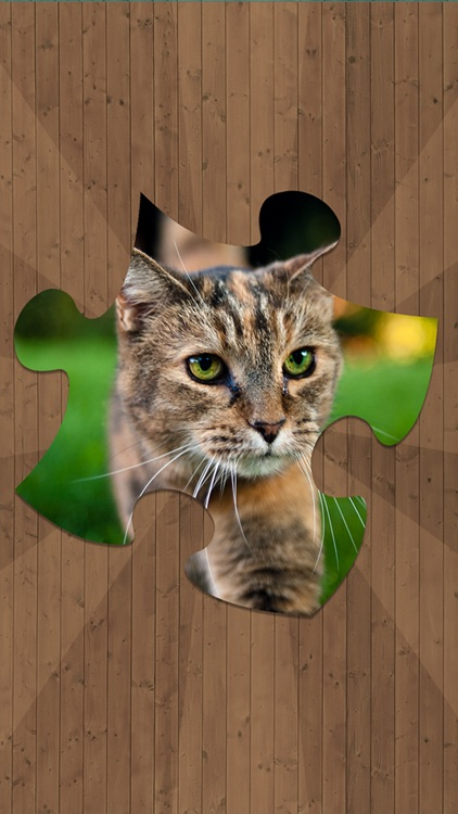 Cat Jigsaw Puzzles screenshot-0