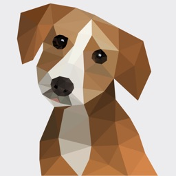 Human to dog translator - Understand your pet!